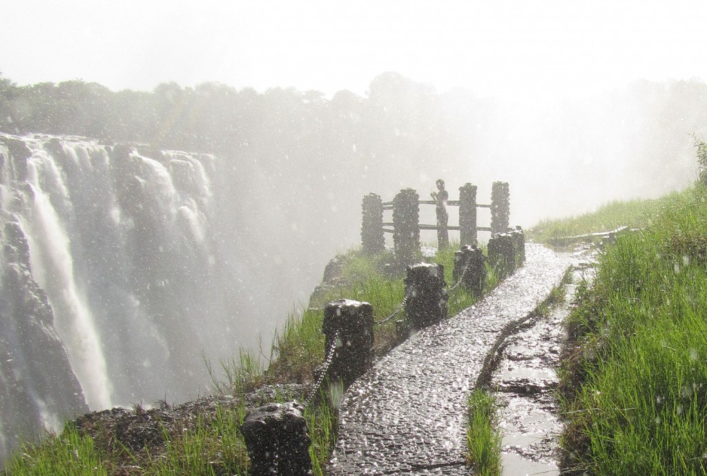 i loved the constant rain shower created by the mist